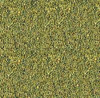 Animal Feed Millet