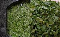 Freeze Dried Basil Leaves