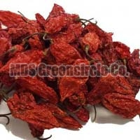 Bhut Jolokia Red Chilli