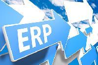 Custom Erp Services