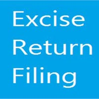 Excise Return Filing Services