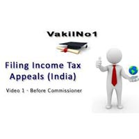 Income Tax Appeal Filling Consultant
