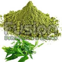 Dehydrated Curry Leaves Powder