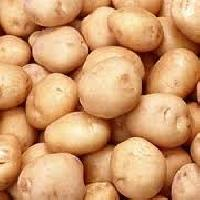 Bulky Fresh Potato