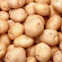 Fresh Frozen Potato