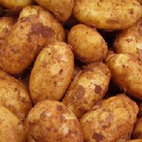 Fresh Kufri Badshah Potato