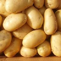 Fresh farm potatoes