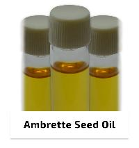 Ambrette Seed Oil Supercritical Co2 Extract