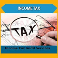 Income Tax Audit Services