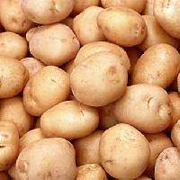 Potato - 02
