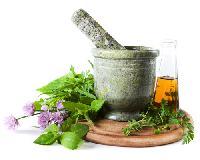 Herbal Health Care Remedies