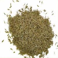 Cumin Seeds 03