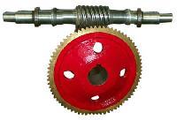 Worm Gear Wheel - 02