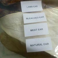 Dog Foods - Ears