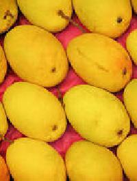 Gulab Khas Mango Pulps
