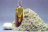 Seeds Oil - 04