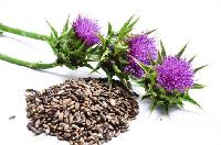 Liver Herbal Medicine