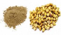 Dry Coriander Powder