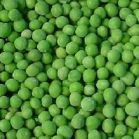 Green Peas (pisum Sativum)