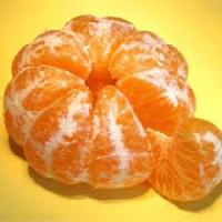 Frozen Orange