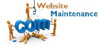 Web Maintenance Service In India.