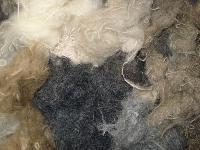 Wool Wastes