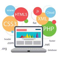 Website Developement Services