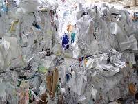 Paper Waste-01