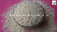 Dehydrated Garlic Granule (8-20 Mesh)