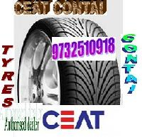 Ceat Automotive Tyre