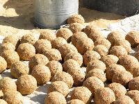 Camel Feed