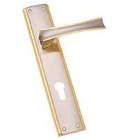 Brass Mortise Door Handles