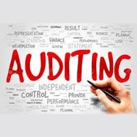 Statutory & Internal Audits