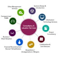 Tax Consulting & Advisory Services