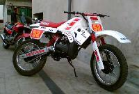 Dirt Bike Customization