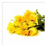 12 Yellow Rose Bouquet