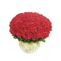 200 Red Rose Basket