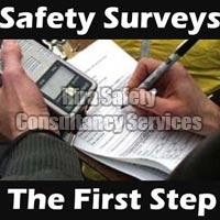 Safety Survey Services