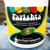 Anti Fungal Paint