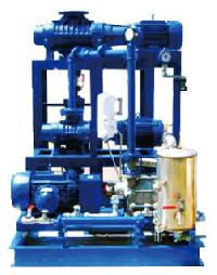 Booster / Dry Screw Vacuum Pump System