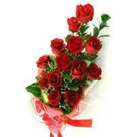 12 Bold Red Rose