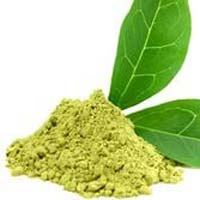 Green Tea Leaf Powder