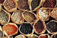 Grains Pulses , Fruits And Vegitable, Onion