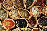 Indian Pulses, Onion, Fruits, Vegitable, Grains , Oil..