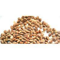 Chironji Seeds