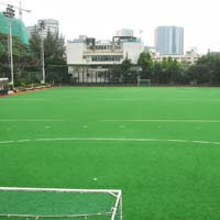 Artificial Hockey Ground Grass