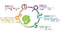 Online Market Research Services