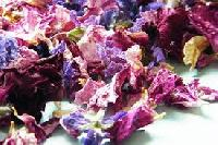 Dried Flowers Petal