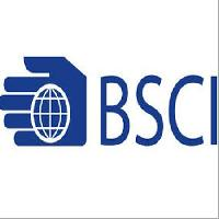 Bsci Certification Consultant Services