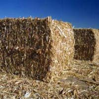 Agricultural Waste